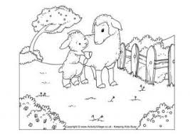 Sheep Scene Colouring Page
