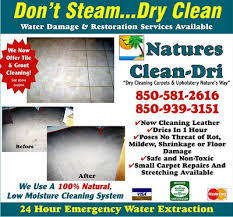 carpet cleaning esther fl carpet cleaner