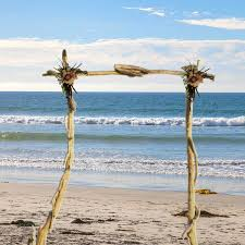 Driftwood Christmas Trees Nz by Driftwood Wedding Arch Driftwood Arbor Maine Beach Wedding
