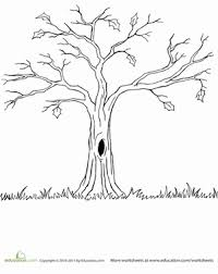 Kindergarten Holidays Seasons Worksheets Bare Tree Coloring Page