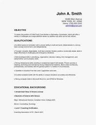 Basic Resume Template Nice Cv Quebec