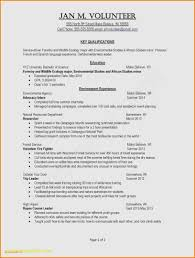 Teen Resume Example Examples Resume Examples For Teens ... Hair Color Developer New 2018 Resume Trends Examples Teenager Examples Resume Rumeexamples Youth Specialist Samples Velvet Jobs For Teens Gallery Cv Example A Tips For How To Write Your 650841 Of Tee Teenage Sample Cover Letter Within Teen Templates Template College Student Counselor Teenagers Awesome Unique High School With No Work Experience Excellent