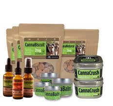 Hemppetproducts Instagram Photos And Videos Best Cbd Oil For Dogs In 2019 Reviews Of The Top Brands And Grateful Dog Treats Canna Pet King Kanine Coupon Code Review Pets Codes Promo Deals On Offerslovecom Hemppetproducts Instagram Photos Videos Cbd Voor Die Diy Book Marketing Buy Cannabis Products Online Mail Order Dispensarygta April 2018 Package Cannapet Advanced Maxcbd 30 Capsules 10ml Liquid V Dog Coupon Finder Beginners Guide To Health Benefits Couponcausecom Purchase Today Your Chance Win A Free Cbdcannabis Hashtag Twitter