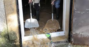 siege mutuelle de poitiers pourquoi les assureurs font leur nid à niort