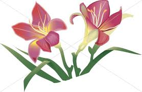 776x505 Church Flower Clipart Image Flowers Graphic