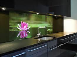 glasbild küchenrückwand spritzschutz 1020 1 gb seerose1 in