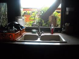 Flying Ants In Bathroom Window by Getting Rid Of Ants In The Kitchen Thriftyfun
