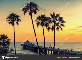 California Beach At Sunset Palm Trees And Pier On Manhattan In Los Angeles Vintage Processed Photo By Luckyphotographer