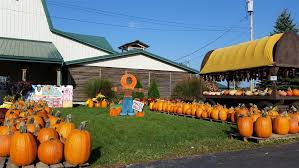 Kingsway Pumpkin Farm Hours by Maize Valley Ohio Haunted Houses