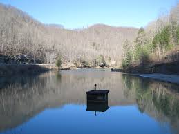 Laurel Bed Lake by Laurel Lake Wildlife Management Area