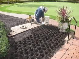 garden design garden design with growing u planting tulips