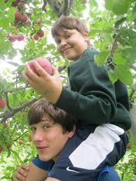 Meadowbrook Pumpkin Farm by Dutchess Farms For Apple Picking U0026 More
