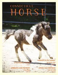 CONNEC T ICUT HORSE