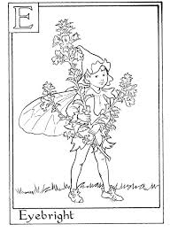 Letter E For Eyebright Flower Fairy Coloring Page