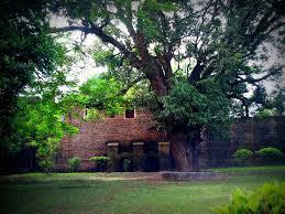 100 Angelos Landscape St Angelos Fort Kannur STV PIX On Facebook STV Flickr