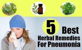 Best 5 Herbal Reme s For Pneumonia How To Treat Pneumonia With
