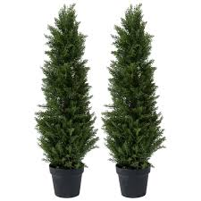 5ft Black Pre Lit Christmas Tree by Charles Bentley Pair Of 3ft Conifer Cypress Trees