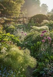 Breathtaking images capture nature s gardens