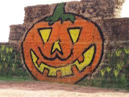 Pumpkin Picking Nj 2015 by Snyders Farm U2013 Family Farm With Roadside Stand Farm Store And U