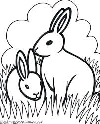 Cute Baby Animals Coloring Sheets Pages Cartoon Dog Farm Sweet Image Animal Realistic Adults Free Toddlers