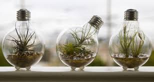 light bulb can you recycle light bulbs inspiring ideas