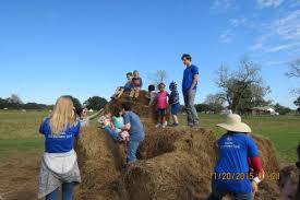 Conners Pumpkin Patch Jacksonville Fl by What Your Admission Includes Conner U0027s A Maize Ing Acres