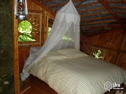 chambre arbre location cabane dans un arbre à cléder iha 35359