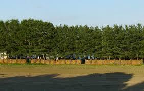 Christmas Tree Farm Near Lincoln Nh by Marshall Farm Concord Ma Home