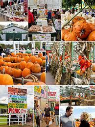 Pumpkin Picking Nj by A Neu York Adventure October 2014