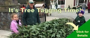 Christmas Tree Shop Deptford Nj Application by Exley U0027s Landscape U0026 Nursery