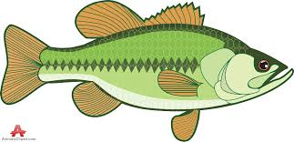 Collection Of Free Tilapia Cliparts On Clip Art Library