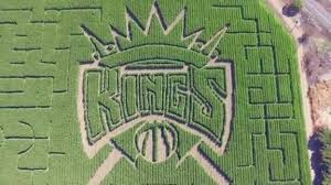 Atlanta Pumpkin Patch Corn Maze by Grand Opening Of Cool Patch Pumpkins Corn Maze Sacramento Kings