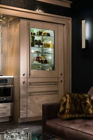 glastürkühlschrank eine interessante idee für ihre küche