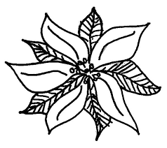Pretty Poinsettia Picture Coloring Page