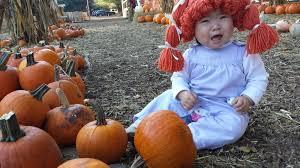 Pumpkin Patch San Jose 2017 by Little Cabbage Patch Madison At Clancy U0027s Pumpkin Patch Photo 3