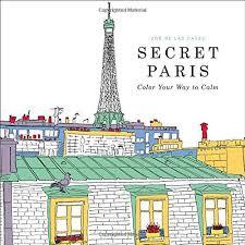 ADULT COLOURING BOOK Secret Paris Color Your Way To Calm