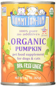 Dog Constipation Treatment Pumpkin by Amazon Com Nummy Tum Tum Pure Pumpkin For Pets 15 Ounce Pack