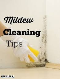 Quickie In The Bathroom by The Best Way To Remove Mold U0026 Mildew With 2 Ingredients No Bleach
