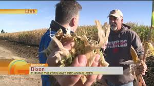 Pumpkin Patch Dixon Ca by It U0027s A Total Fun Friday Today In The News Norcalnews