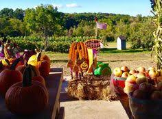 Best Pumpkin Picking Bergen County Nj by Riamede Farm In Chester New Jersey For Apple Picking Pumpkin