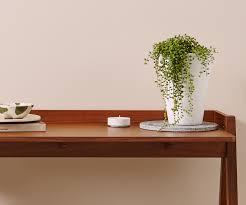 Pot Plants For The Bathroom by Bathroom Design Wonderful Bamboo Plants Bathroom Flowers Decor