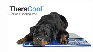 Kh Cool Bed Iii by Theracool Gel Cell Cooling Dog Pad Youtube