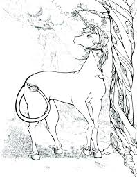 Unicorn Coloring Pages For Adults Color Packed With The