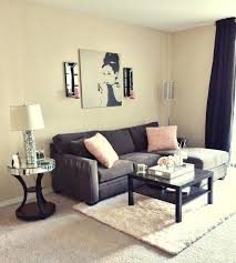 Charming Cute Apartment Decor Living Room Decorating Ideas Pictures Wonderful Best About