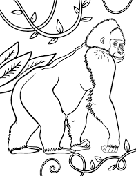 Free Gorilla Coloring Page