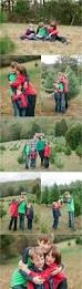 Christmas Tree Farm For Sale Boone Nc by Christmas Tree Farm Family Pictures With Buffalo Plaid Family