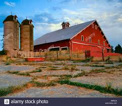 Century Old Barn With A Gabled Roof , Cupola And Silos In ... Old Red Farm Barn With Concrete Silo Stock Photo Picture And Yellow With Canada Suzanne Berton Cute And Free Clip Art Barn Silo Donnasdesigns Cornfield A Silos In Rural Wisconsin Filered A Panoramiojpg Wikimedia Commons Image 21504700 Beautiful White 113806882 Shutterstock Photos Images Alamy Barns J F Mazur Fine Studio Playhouse Plan 300ft Wood For Kids Pauls Clipart 33