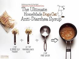 Turkey And Pumpkin For Dog Diarrhea by 8 Home Remedies To Treat Dog Diarrhea Paw Castle