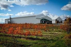 Pumpkin Patch Caledonia Mi by Sparta Michigan Grand Rapids Area Towns