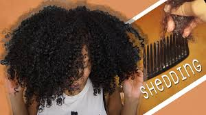 NATURAL HAIR SHEDDING How Much Is NORMAL Samantha Pollack